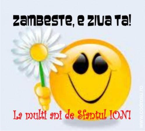 felicitari-de-sfantul-ion_poze_011