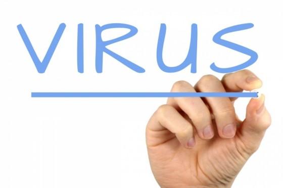 153380348599-virus-S4